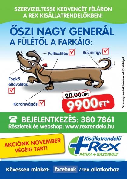 4. Kerület állatorvosi rendelő