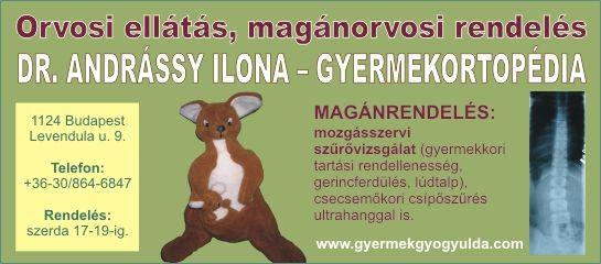 Dr. Andrássy Ilona egészségügyi ellátás XI.