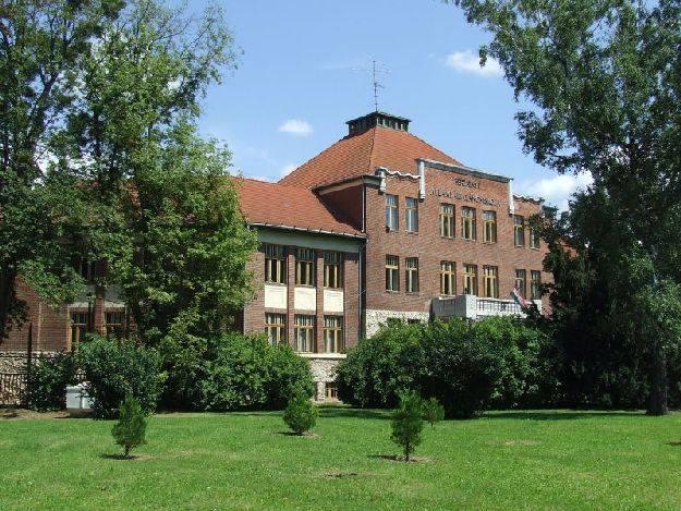 Kapsovári Berzsenyi Általános Iskola épülete ősfákkal van eltakarva.